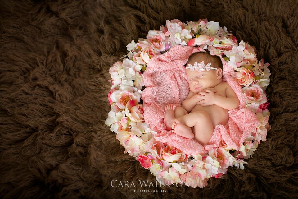 newborn girl in flowers