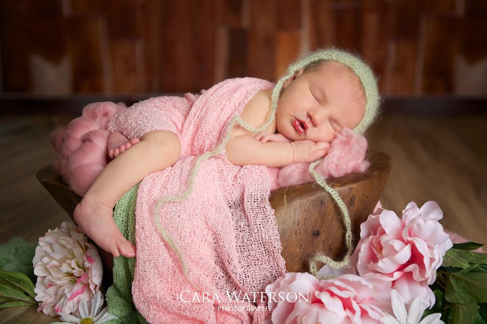 newborn girl in spring