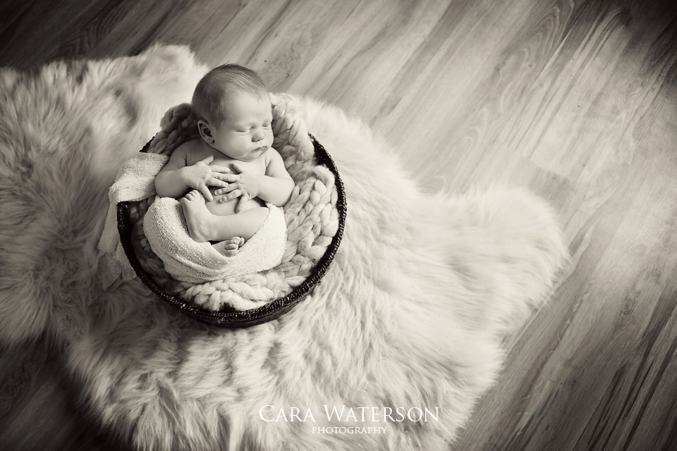 b&w baby in basket