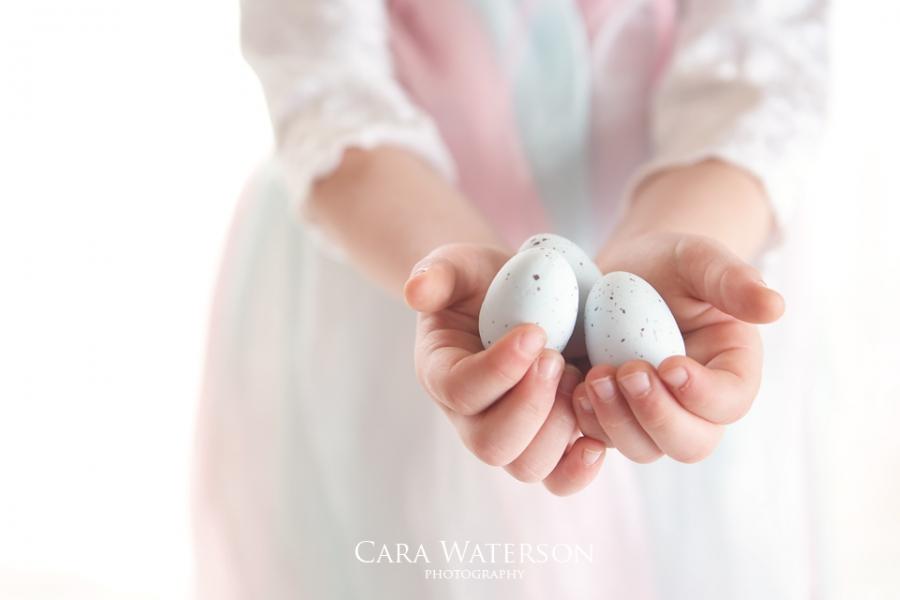 fairy with eggs