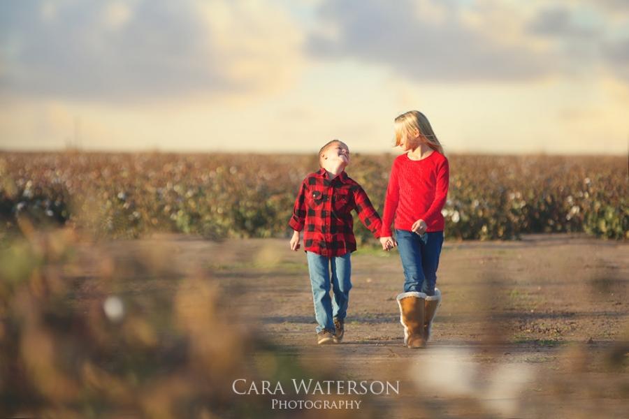 siblings in cotton