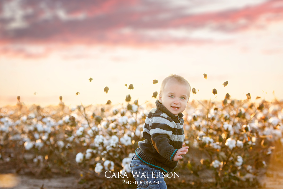baby playing in cotton